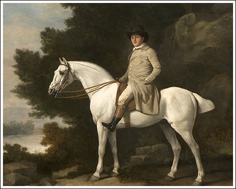 Portrait of a Gentleman on a Gray Horse - George Stubbs