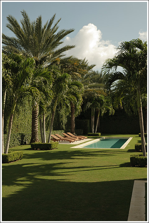 Mario Nievera design - Forever Green