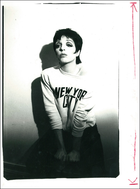 Andy Warhol's portrait of Liza-Minelli - courtesy Jim Hedges