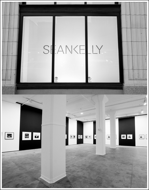 Mapplethorpe at at the Sean Kelly gallery - photo Matt Dean